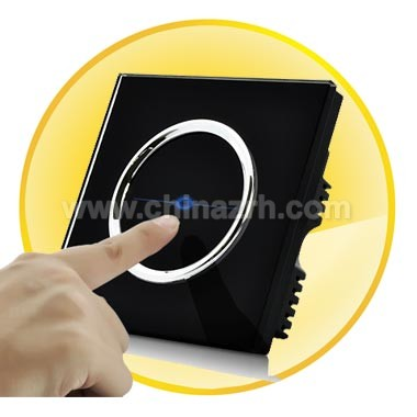 Touch Sensitive Light Switch with Remote Control
