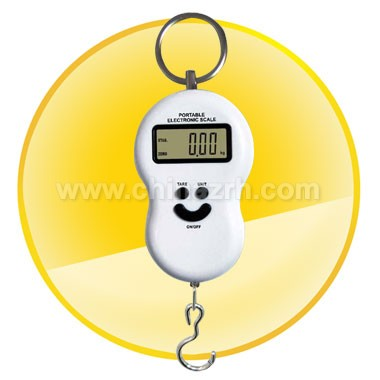 Portable Digital High-Load Weighting Hook Scale